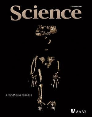 science-cover-ardi-fossil-s