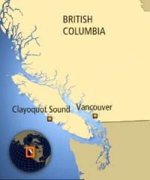 bc-080801-clayoquot2