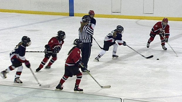 Minor hockey teams and figure skating clubs are pushing for more ice time in Dartmouth and Halifax.