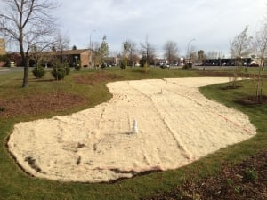 Thunder Bay stormwater