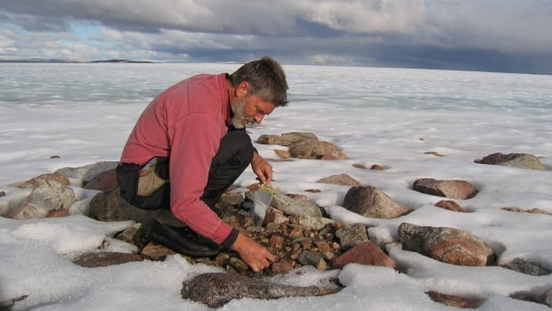 Gifford Miller collects long-dead tundra plants exposed by melting of an Arctic ice cap on Baffin Island, Canada.