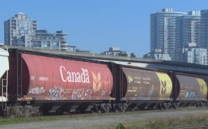 New West rail yard cars