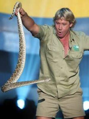 Steve Irwin Stingray
