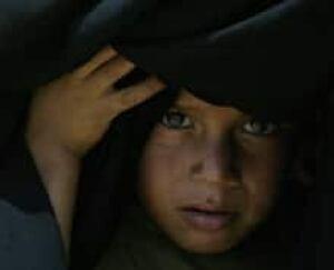 iraq-refugee-cp-3368536