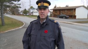nl rcmp terry foster deer lake 20131031