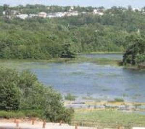 grassy-brook-lake-micmac