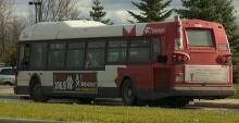 OC Transpo bus (Nov. 1, 2013)