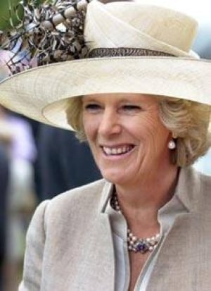 Camilla Can Legally Be Queen U K Minister World Cbc News