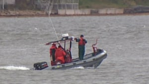 Hillsborough River search and rescue
