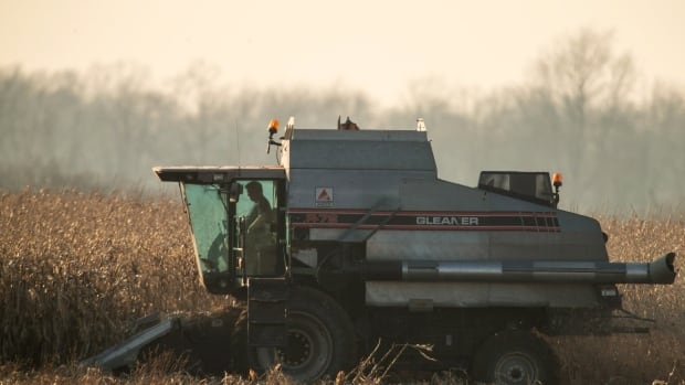 A study conducted by researchers at the University of Guelph found that many farmers struggle with mental health issues.