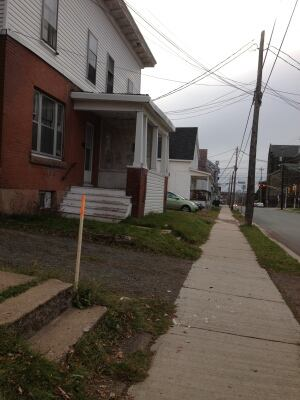 Lutz Street