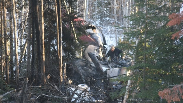 A member of the Transportation Safety Board investigates the wreckage of Bearskin Airlines flight 311.
