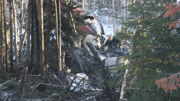 A member of the Transportation Safety Board investigates the wreckage of the Bearskin Airlines crash. The crash, which killed five people near Red Lake, Ont., was caused by engine failure while the plane was just 150 metres off the ground, the TSB says.