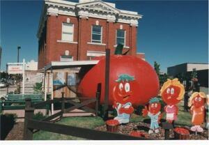 Leamington tomato