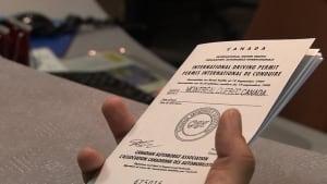 International driver's permit