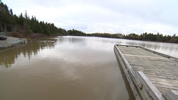 Residents have been complaining about silt browning the water in scenic Power's Pond, a popular destination for people in Mount Pearl.