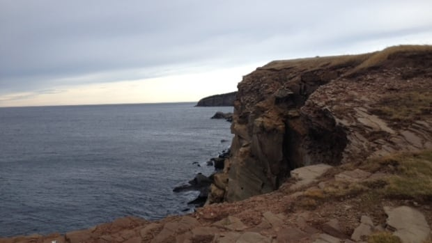 A 62-year-old Sydney man was found at the bottom of a cliff on Cheticamp Island, N.S., according to police.