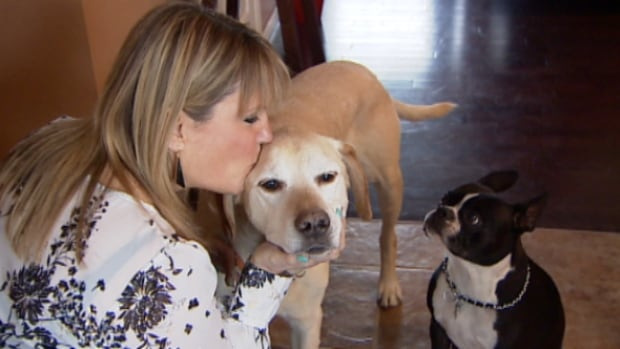 Christina Stephenson faces eviction or a $250 daily fine if she doesn't get rid of her yellow Labrador Charlie.  Stephenson rented a condo in west Edmonton and just learned that the condo board rules only allow residents to own one pet that weighs less than 20 pounds.