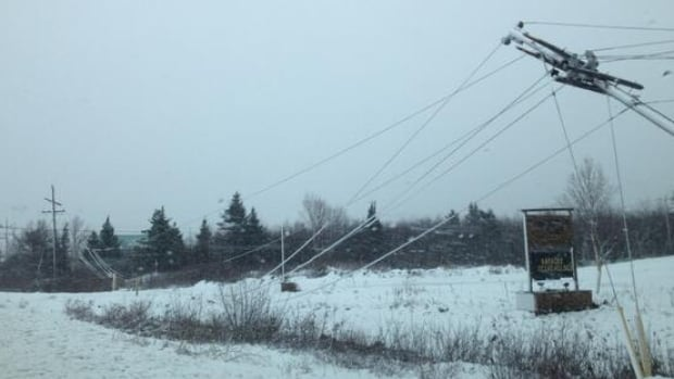 A snow and wind storm has knocked power lines in central Newfoundland out of commission.