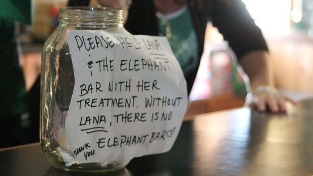 Even fans who have never met Lana Hodgins are stopping into the Elephant Bar to make donations.