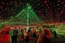 Australia Christmas Lights
