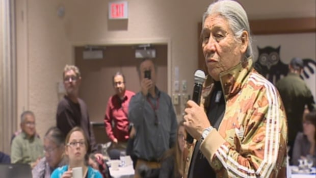 Dene elder Francois Paulette: 'I have more concern about the fish that are in the river, that feed when the water is low.' Paulette was one of many to voice concerns about the impact of the coal mine spill on the fish upstream.
