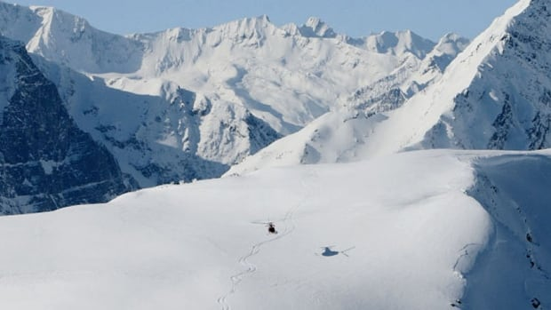 Heli-skiing trips involve helicopters bringing skiers to remote mountains.