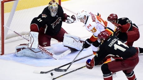 Flames aim to maintain home mastery over Coyotes
