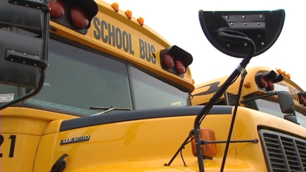 A school bus driver in St. John's who is 71 years old has been charged with drunk driving.
