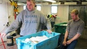 Lake Erie fishery