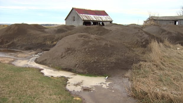 Advocates say wood ash is safe and effective.