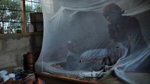 Malaria bednet
