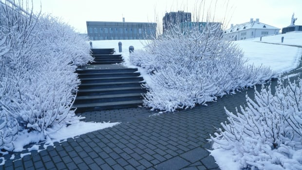 Geothermally-heated sidewalks in downtown Reykjavik, Iceland.