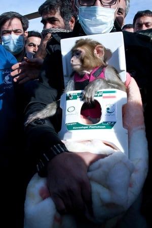 Mideast Iran Space Monkey