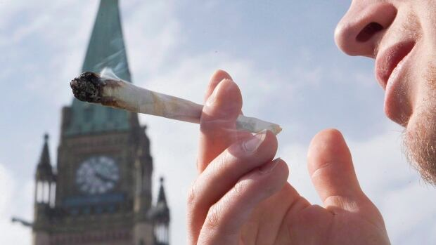 A demonstrator smokes a marijuana joint on Parliament Hill in Ottawa on April 20, 2010. Police would have the option of ticketing people for a range of minor offences, instead of laying criminal charges, under a plan that could yield significant savings for the cash-strapped justice system.
