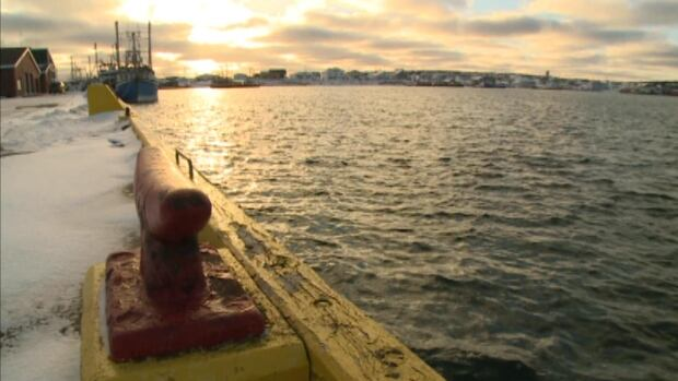 Some fishermen in Port au Choix believe the government wharf in the community is showing its age, and is not safe.