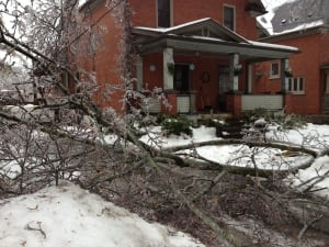 Ice storm Kitchener