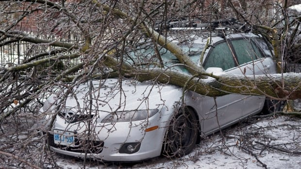 A tree lies on top of a car following an ice storm in Toronto on Dec. 23, 2013.