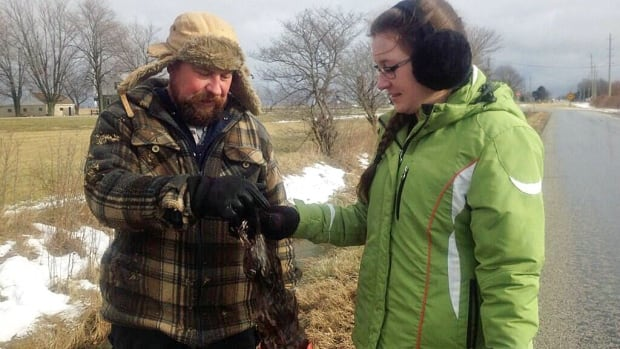 Greg and Maddie Morencie have been trapping in Essex County for years.