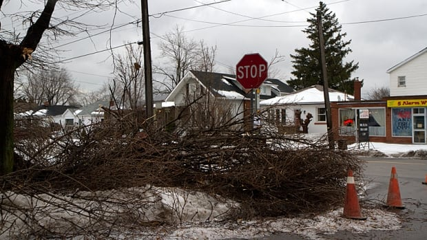 It'll take at least another two months to clean up the massive debris caused by the Dec. 21 ice storm.