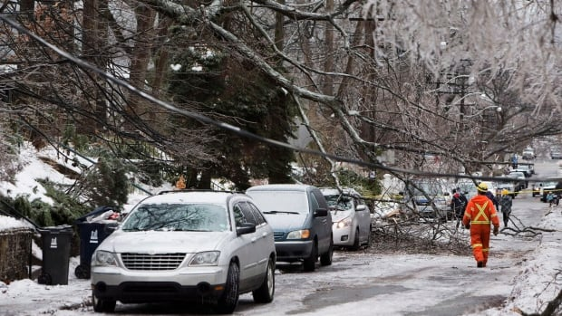 A Toronto Hydro worker surveys the damage on a street near Kingston Road and Victoria Park Avenue in Toronto following an ice storm, on Monday, Dec. 23, 2013.