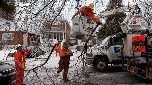 Leave the removal of fallen limbs to professionals and don't approach sagging or downed wires.