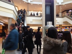 Shoppers in mall