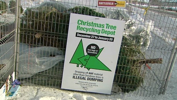 Special recycling depots will be open, starting on Dec. 27, for those who are ready to cast off their Christmas trees in Winnipeg.