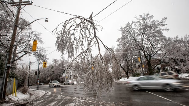 The ice storm that hit Toronto in December cost the city approximately $106 million in damages and lost revenue, according to a new report from city staff.