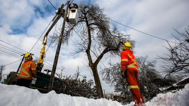 The ice storm that hit Toronto ahead of Christmas left some 300,000 customers without power.