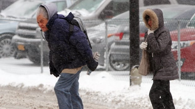 Walkers brave the cold and snow in Buffalo, N.Y, Thursday.  A winter storm promising significant snowfall, strong winds and frigid air bore down Thursday on the northeast U.S., making commutes hazardous for the first work day of the new year.