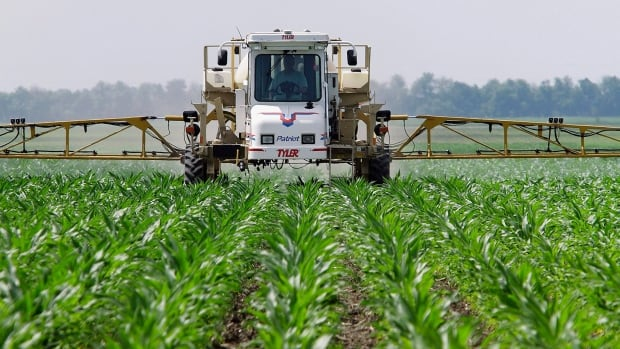 A central Illinois corn farmer sprays the weed killer glyphosate across his cornfield. The U.S. is considering approving genetically modified corn seeds resistant to the herbicide 2,4-D.