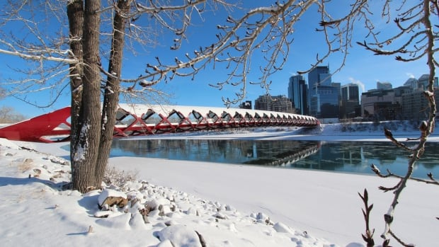 Calgary welcomed 2014 with a beautiful, snow-covered day of sunshine.