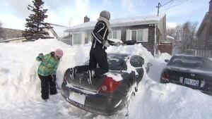 nl st. john's car shovellers 20140104